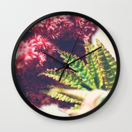 Sumac Rhus typhina also called Virginia Sumac close-up plant leaf growing Wall Clock