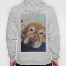 Sweet Sleeping Golden Retriever Puppy by annmariescreations Hoody