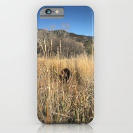 Abandoned wheel - Red Mountain, Glenwood Springs, CO iPhone Case