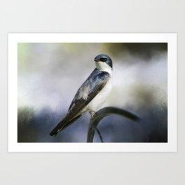 Tree Swallowtail Art Print