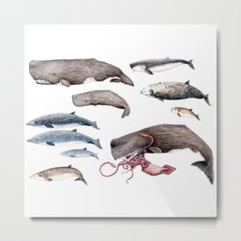 Deep sea whales Metal Print