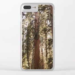 Sequoia National Park XIV Clear iPhone Case