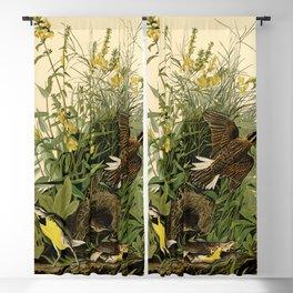 Meadow Lark (Sturnella magna) Blackout Curtain