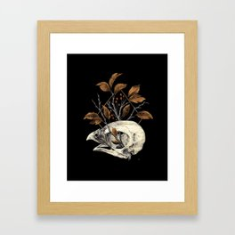 Kite Skull Study Framed Art Print