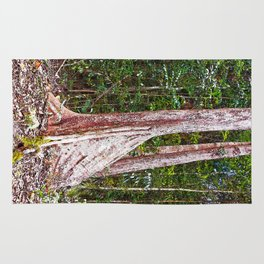 Buttress root in the rainforest Rug