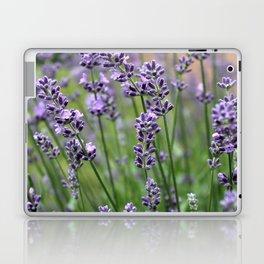 Lavender Plant Laptop & iPad Skin