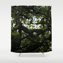 Old Tree Gnarled Branches Pattern Shower Curtain