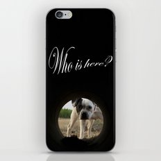 My dog Kira  iPhone & iPod Skin