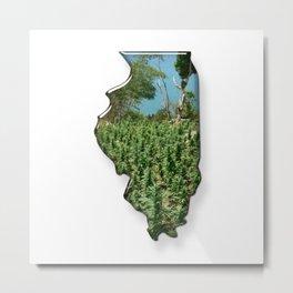Green Illinois Metal Print