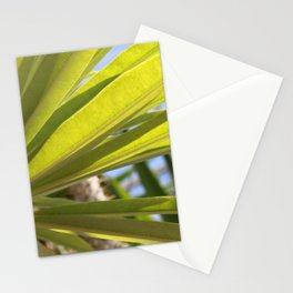 Light Coming Through Stationery Cards