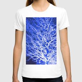 Longwood Gardens Christmas Series 50 T-shirt
