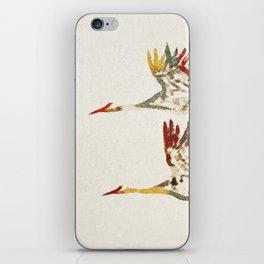 Due Uccelli iPhone Skin