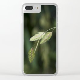 Grains Clear iPhone Case