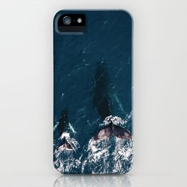 Ocean Family Whales iPhone Case