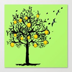 Orange tree Orchard Canvas Print
