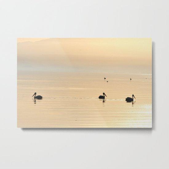 WHITE PELICANS - SUNSET - SALTON SEA Metal Print