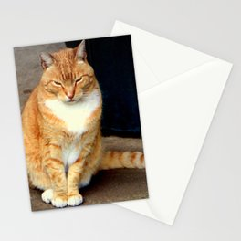 Straighten Up Stationery Cards