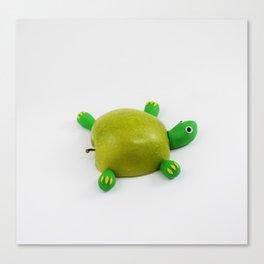 Turtle Apple Canvas Print