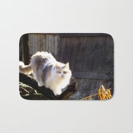 The Beautiful Maine Coon Dilute Calico Bath Mat