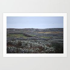 Irish Landscaping Art Print