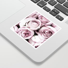 A Cascade of Perfectly Pink Roses Sticker