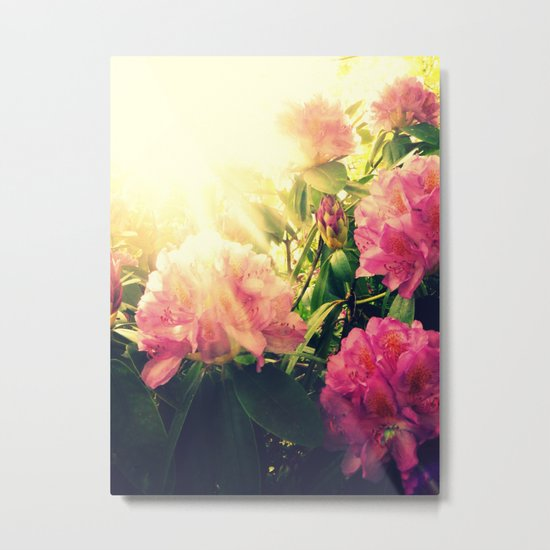 Rhododendron Resplendent Metal Print