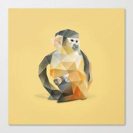 Spider Monkey. Canvas Print