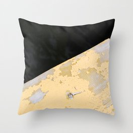Chipped Paint and the Dark Deep Throw Pillow