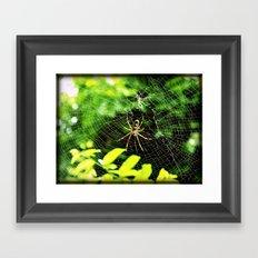 Webs Of Green Framed Art Print