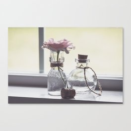 Pink Rose in Tiny Bottle Canvas Print