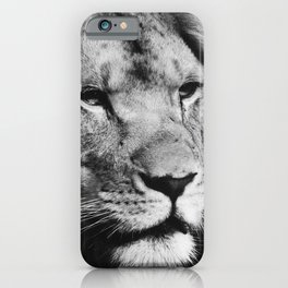 African Lion Black and White Photographic Print iPhone Case