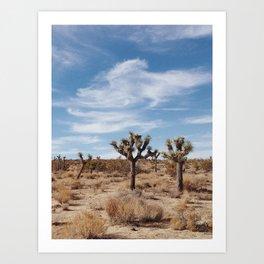Joshua Tree National Park, CA Art Print