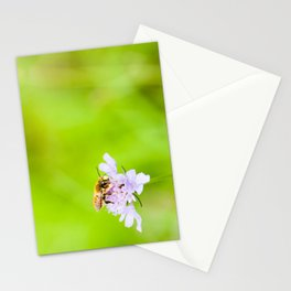 A bee on a flower Stationery Cards