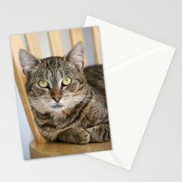 Rescue Cat Stationery Cards