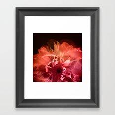 Dream Flower 8 Framed Art Print