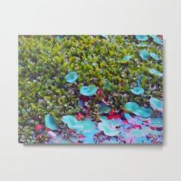 Lily Pond 3 Metal Print