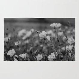 Sepia field  Rug