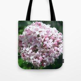 VALERIAN Tote Bag