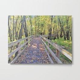 Quebec in autumn Metal Print