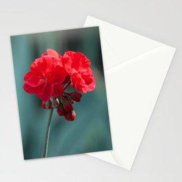 Red pretty pelargonium Stationery Cards