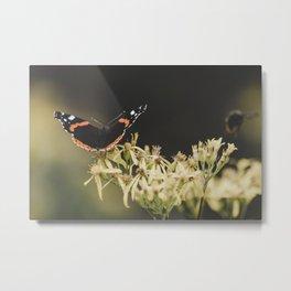 Landing on a flower Metal Print