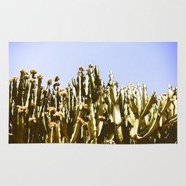 Sticky Cacti Rug