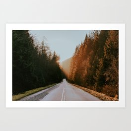 Golden Ears Art Print
