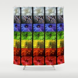 chakra flowers Shower Curtain