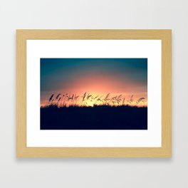 Seagrass Sunset Framed Art Print