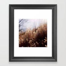 Dipped in Sunshine Framed Art Print