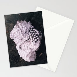 The Oddly Organic Appearance of Styrofoam Stationery Cards