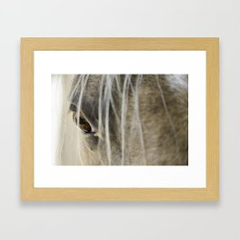 Stallions know Framed Art Print