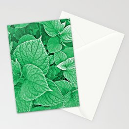Orquidea Stationery Cards