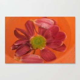 flower in orange pool Canvas Print